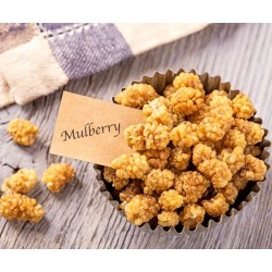 Mulberries blanches séchées...