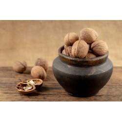 Cerneaux de noix du...