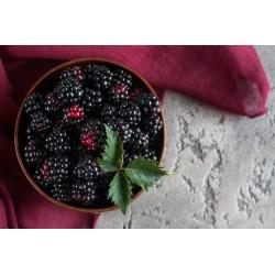 Mulberries noires séchées...