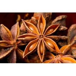 Fairtrade star anise from...