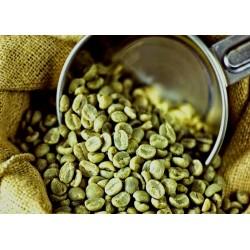 Café vert bio d'Exception...