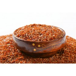 Organic red rice PGI from Camargue - Direct Producer