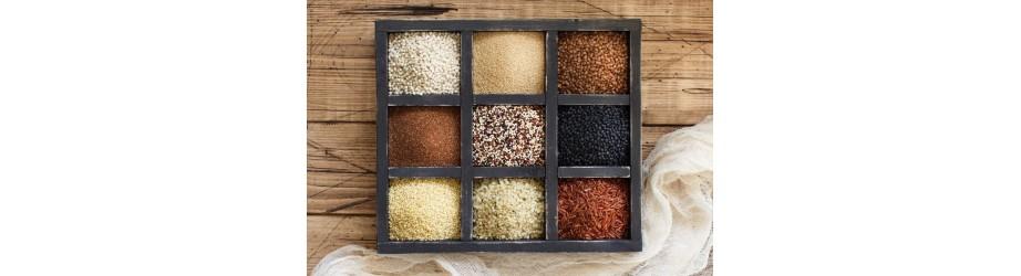 Nos graines bio, fairtrade & crueltyfree