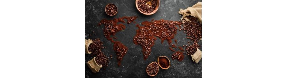 Nos cafés moulus bio fairtrade crueltyfree