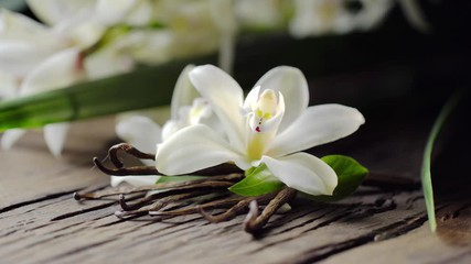 vanille Bourbon bio de Madagascar hecosfar